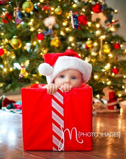 Fotos natal bebês 3